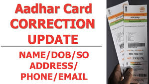 Aadhar Card Correction, Aadhar Status